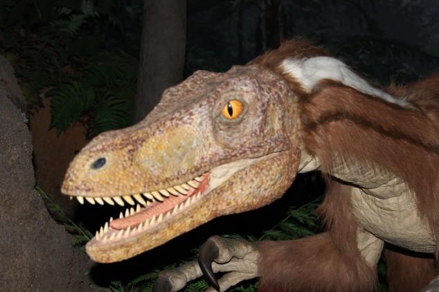 恐竜に毛が生えていた!!!