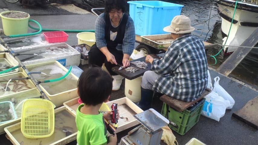 魚市場に夢中の親子