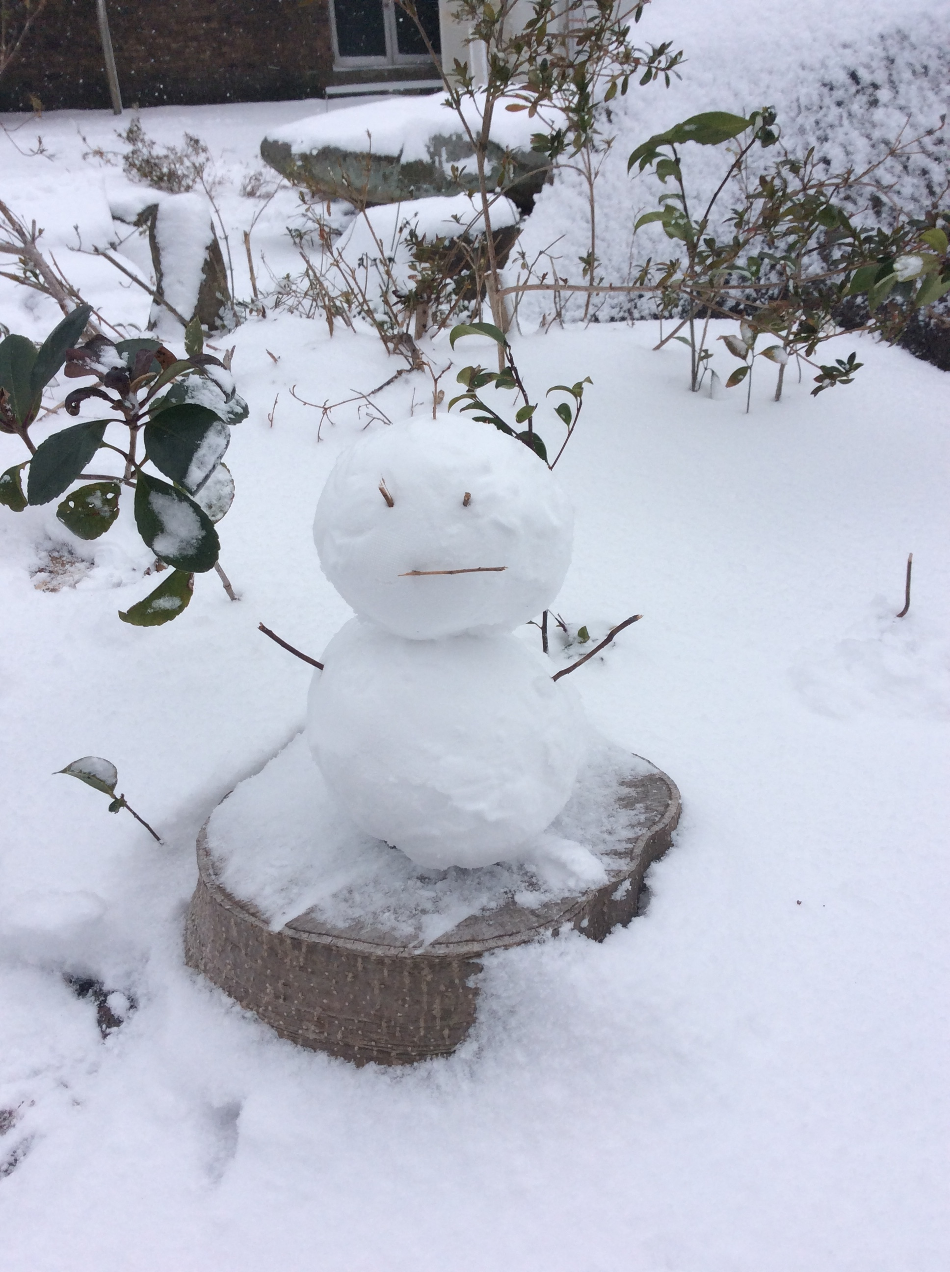 大雪の1日