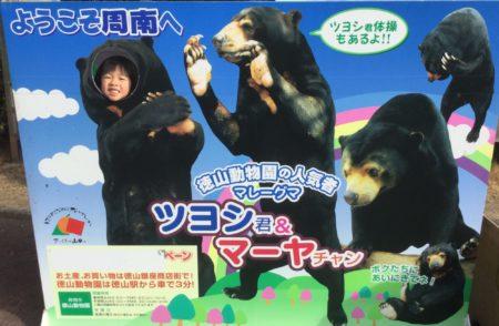 進化する徳山動物園