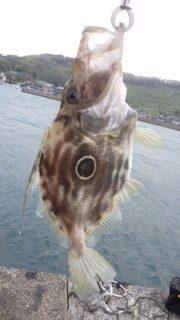 釣りは「三密」を避ける?<後編>